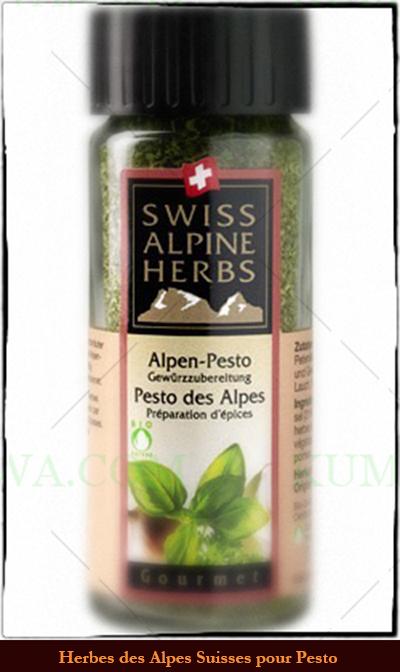 Herbes Des Alpes Suisses Pour Pesto