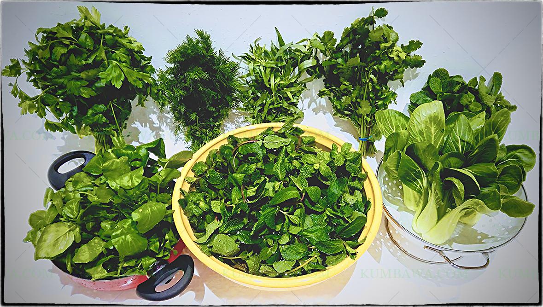 Les Herbes Fraîches