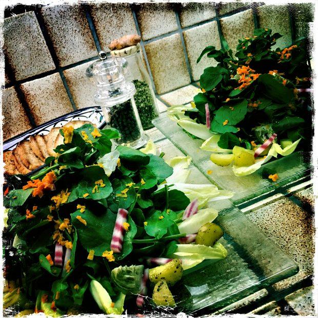 10 Salade de Légumes Et Verdure Chaud Froid 01